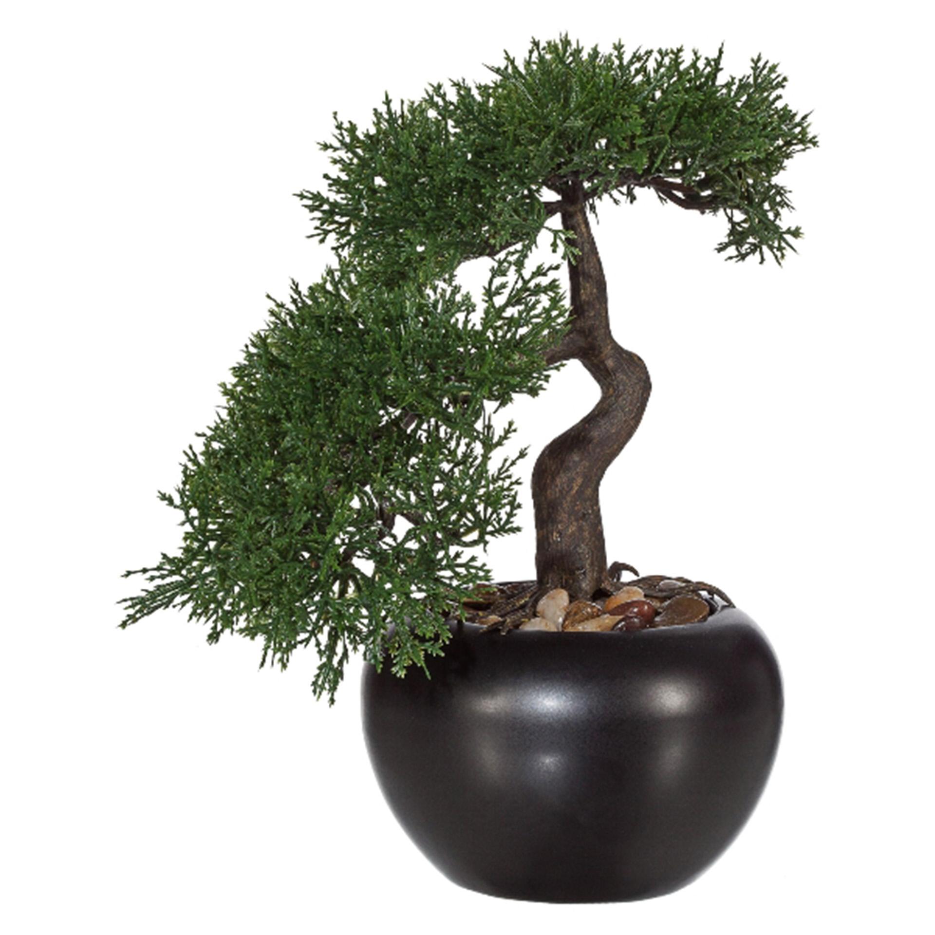 Kunstpflanze Bonsai Zeder 25cm