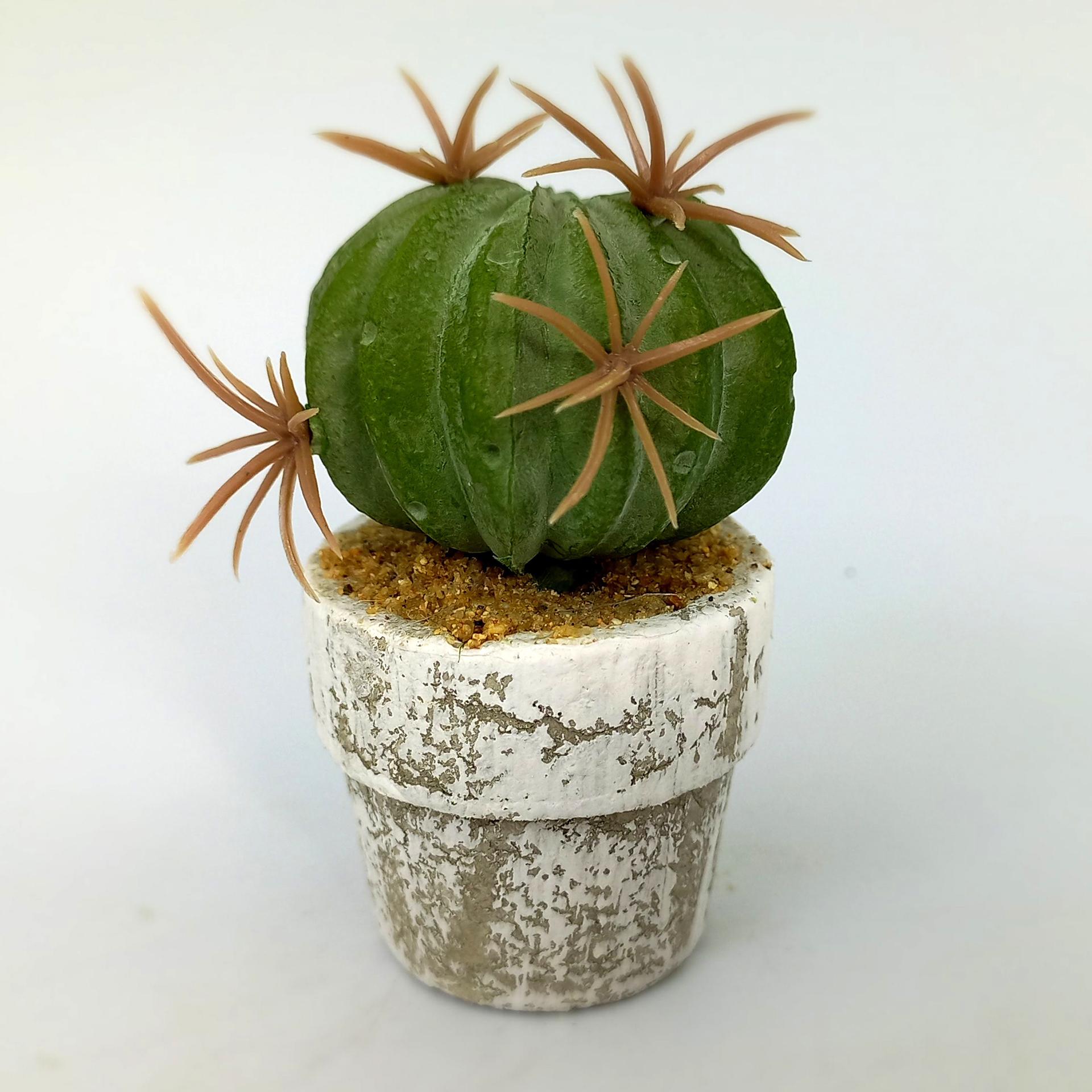 Kunstpflanze Kaktee 1