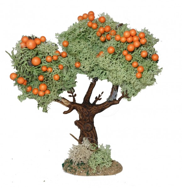 Krippenbotanik Orangenbaum