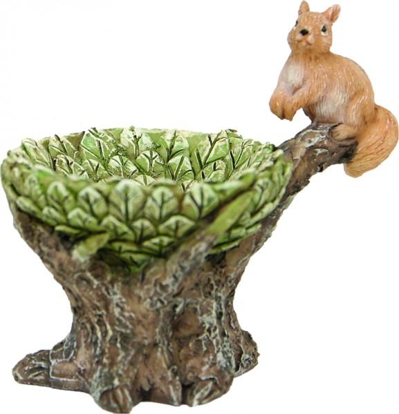 Blätternest mit Eichhörnchen