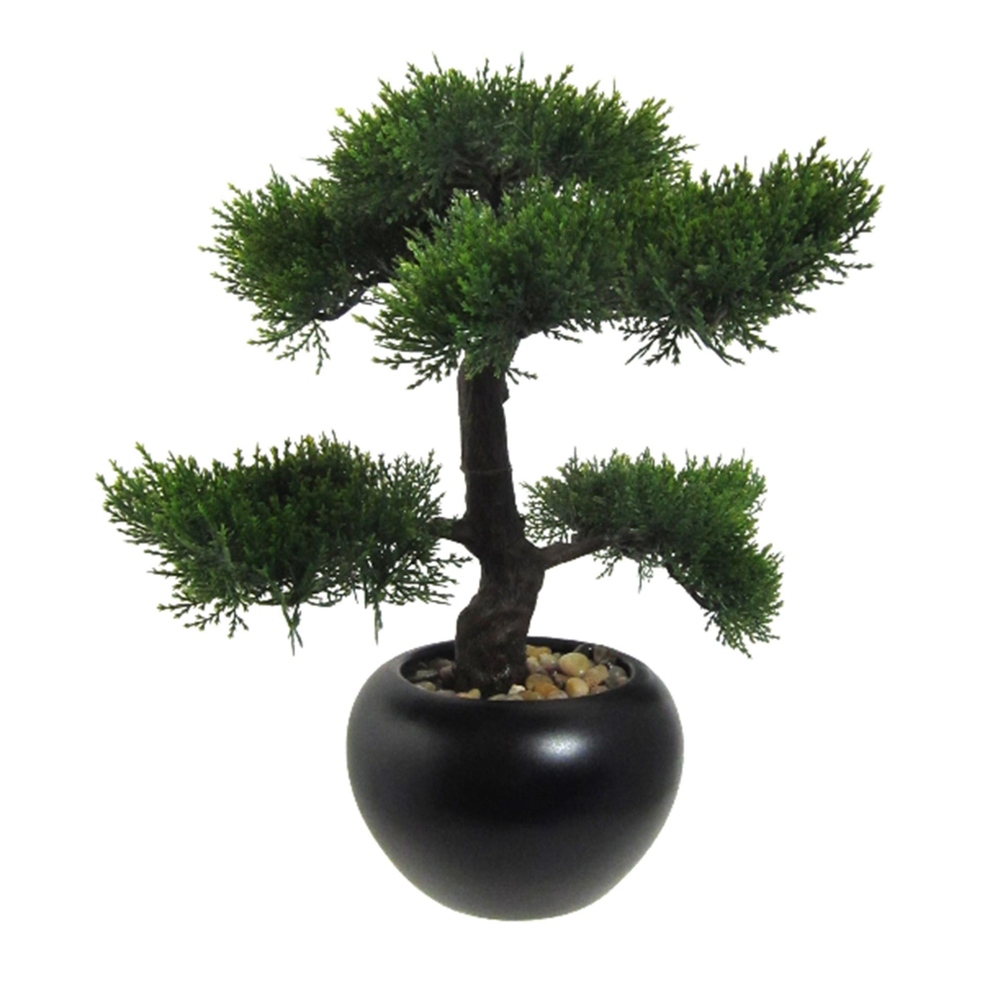 Kunstpflanze Bonsai Zeder_37cm