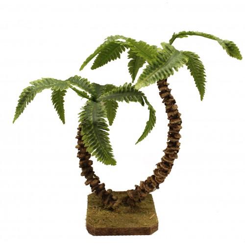 Doppel-Palme hellgrün, Höhe  23cm